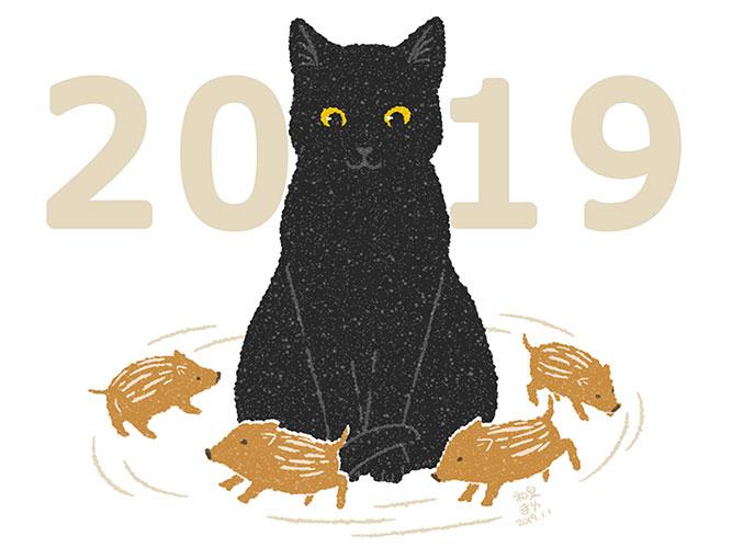 2019猫とウリ坊たち